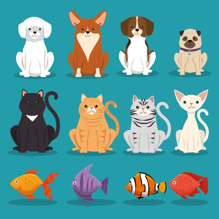 Illustrazione per dogs cats and fish pets characters vector illustration design - Immagini Royalty Free