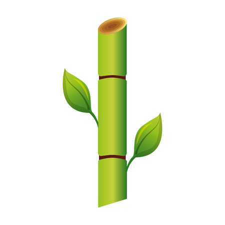 Illustration for Sugar cane plant icon illustration design - Royalty Free Image