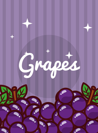 Illustration for striped bright background fresh natural fruits grapes vector illustration - Royalty Free Image
