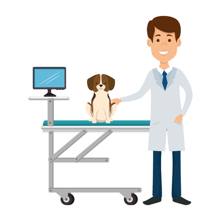 Illustration pour veterinary doctor with dog in stretcher avatar character vector illustration - image libre de droit