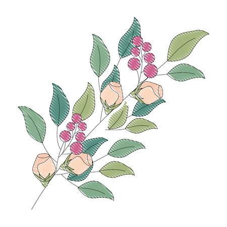 Illustration pour decorative branch flowers berries leaves decoration vector illustration drawing - image libre de droit