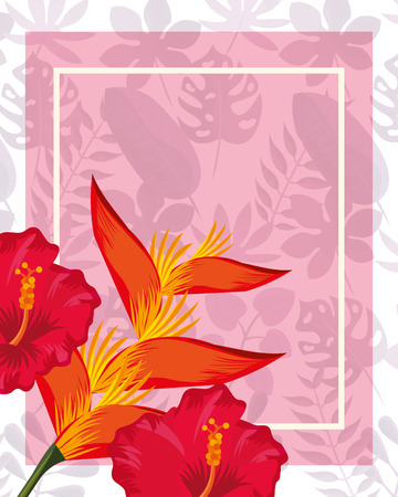 Illustration for tropical leaves frame heliconia flowers colors vector illustration - Royalty Free Image