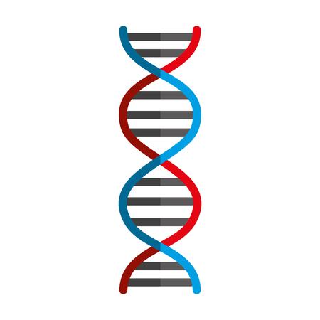 Illustration pour dna molecule isolated icon vector illustration design - image libre de droit