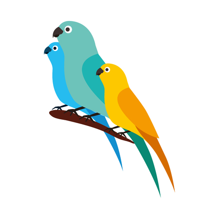 Illustration pour canary and parrots birds on branch vector illustration - image libre de droit