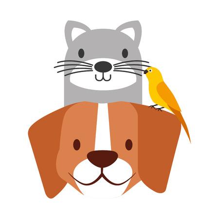 Illustration pour pets dog and cat canary bird vector illustration - image libre de droit