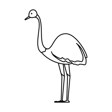 Ilustración de wild ostrich bird character vector illustration design - Imagen libre de derechos