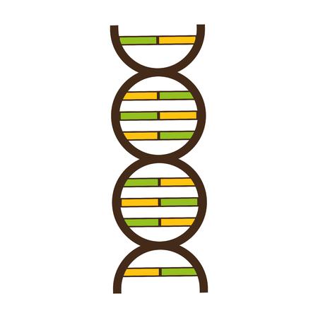 Illustration pour science genetic dna on white background vector illustration - image libre de droit