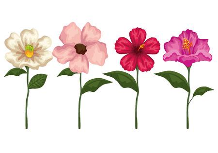 Ilustración de set tropical flowers plants with exotic leaves vector illustration - Imagen libre de derechos