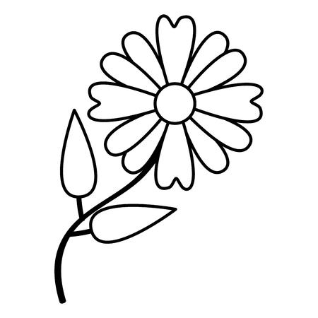 Illustration for flower daisy nature on white background vector illustration - Royalty Free Image