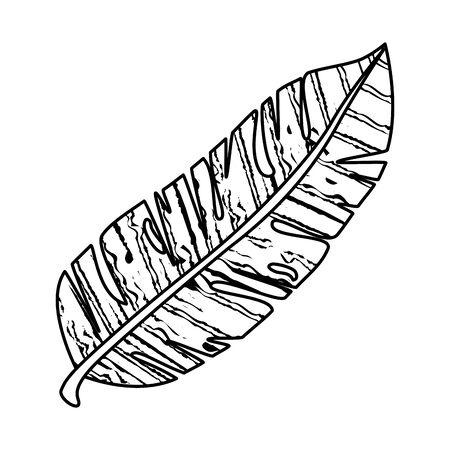 Ilustración de exotic leaf plant icon vector illustration design - Imagen libre de derechos