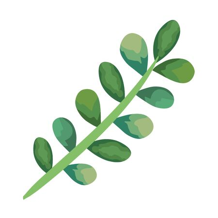 Illustration for branch with leaves illustration - Royalty Free Image