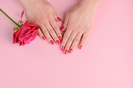 Foto de Elegant and glamorous pink nails. Womans well-groomed hands and rosebud. Classic style manicure. - Imagen libre de derechos