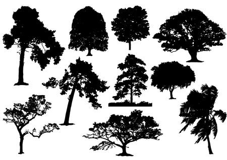 Ilustración de 10 black tree silhouette no stroke - Imagen libre de derechos