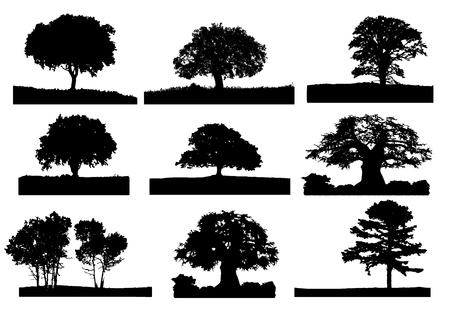 Illustration for 9 black tree silhouette with grass - Royalty Free Image