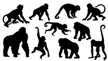 Ilustración de monkey silhouettes on the white background - Imagen libre de derechos