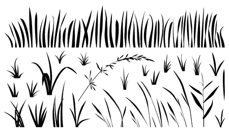 Illustration pour grass silhouettes on the white background - image libre de droit