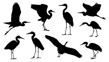 Ilustración de heron silhouettes on the white background - Imagen libre de derechos