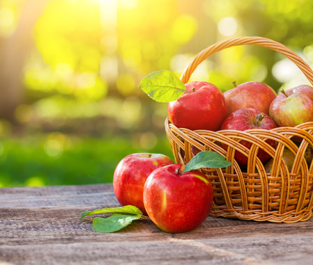 Photo pour Organic apples in basket in summer grass. Fresh apples in nature - image libre de droit