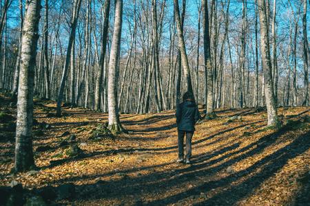 Foto de A girl hiking through the shadows of the trees in an autumnal forest - Imagen libre de derechos
