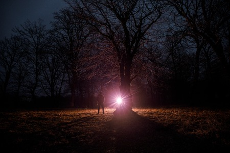 Photo pour strange light in a dark forest at night. Silhouette of person standing in the dark forest with light. Dark night in forest at fog time. Surreal night forest scene. Horror halloween concept. Fairytale - image libre de droit