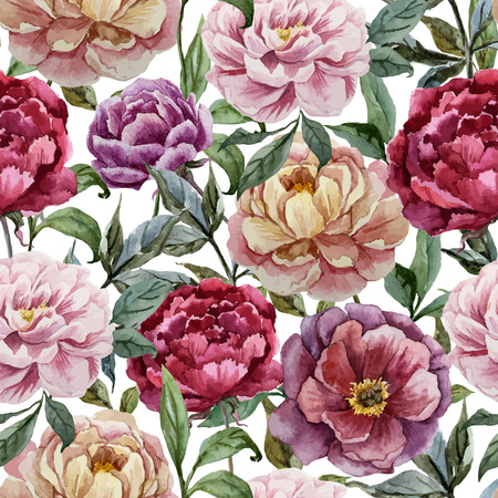 Photo pour Beautiful vector watercolor pattern with peonies on white fon - image libre de droit