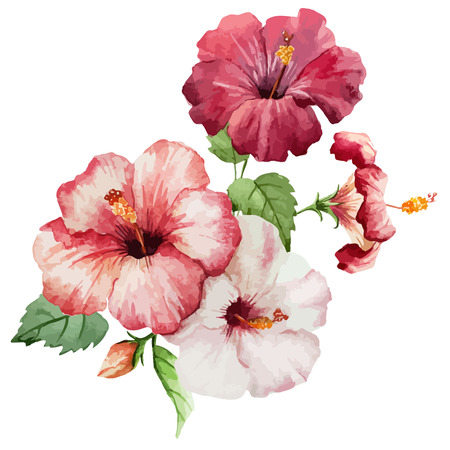 Ilustración de Beautiful vector red and rose flowers on white fon - Imagen libre de derechos