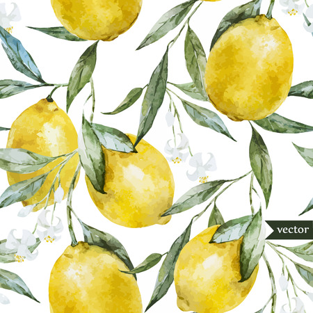 Ilustración de Beautiful watercolor vector pattern with yellow lemons on brunch - Imagen libre de derechos
