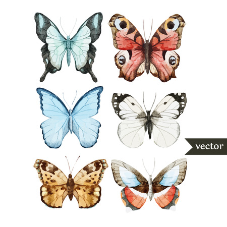 Ilustración de Beautiful watercolor vector butterfly set different types - Imagen libre de derechos