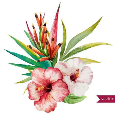 Illustration pour Beautiful vector illustration with nice tropical flowers - image libre de droit