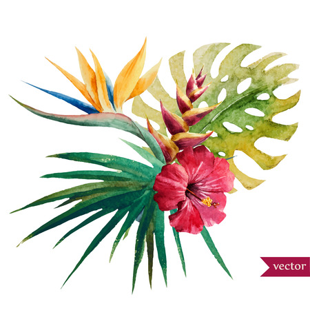 Ilustración de Beautiful vector illustration with nice tropical flowers - Imagen libre de derechos