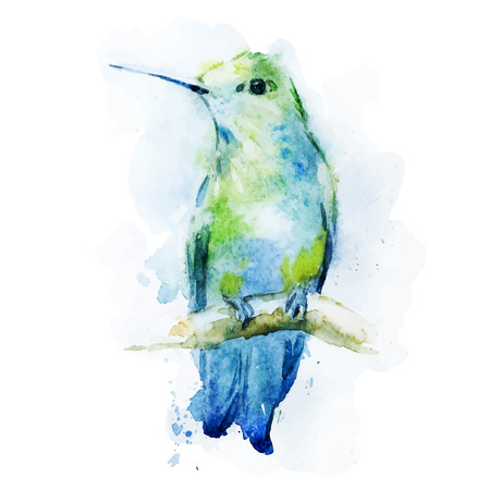 Illustration for Beautiful vector image with nice watercolor colibri bird - Royalty Free Image