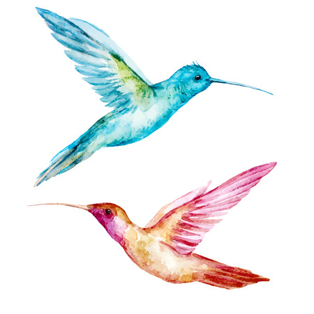 Ilustración de Beautiful vector image with nice watercolor colibri bird - Imagen libre de derechos