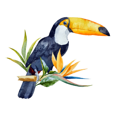 Illustration pour Beautiful  image with nice watercolor toucan with flowers - image libre de droit