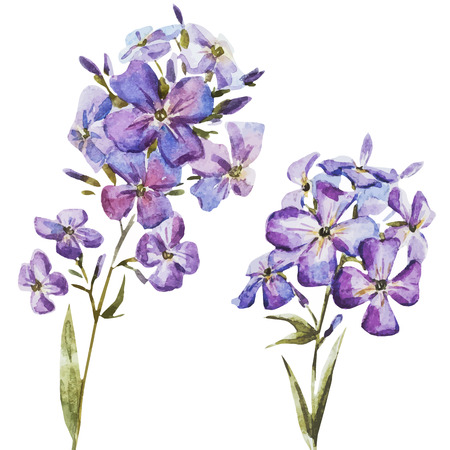 Illustration for Beautiful vector image with nice watercolor flowers - Royalty Free Image