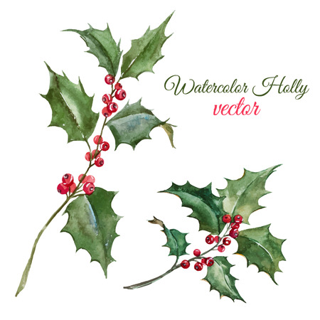 Ilustración de Beautiful image with nice watercolor christmas holly flower - Imagen libre de derechos