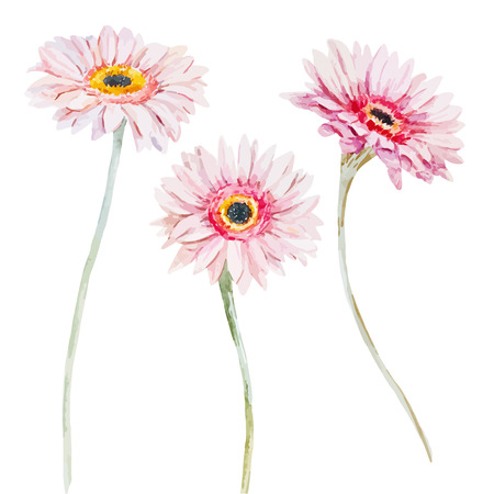 Illustration for Beautiful image with nice watercolor flowers - Royalty Free Image