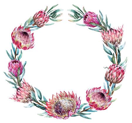 Illustration pour Beautiful vector image with nice watercolor tropical protea wreath - image libre de droit