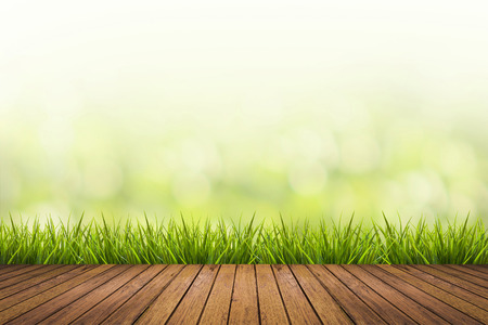 Photo pour Fresh spring grass with green nature blurred background and wood floor - image libre de droit