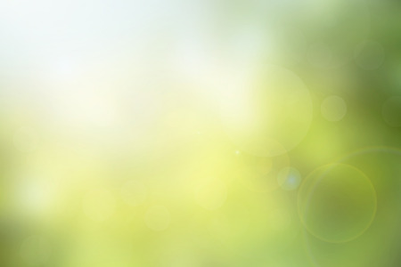 Photo pour Abstract green nature blurred background with bright sunlight, flare and bokeh effect, use for backdrop or web design in environment concept - image libre de droit
