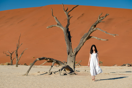 Photo for Young attractive Asian girl wearing white dress walking in deadvlei (Sossusvlei), famous natural landmark in Namib desert of Namibia, Africa - Royalty Free Image