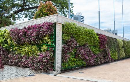 Foto de vertical garden in the center of Kuala Lumpur, Malaysia. - Imagen libre de derechos