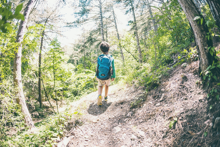 Photo pour Child with a backpack in the forest. The boy walks along the mountain path. Active vacations. Traveling with children. The kid is studying nature. Fisheye lens. - image libre de droit
