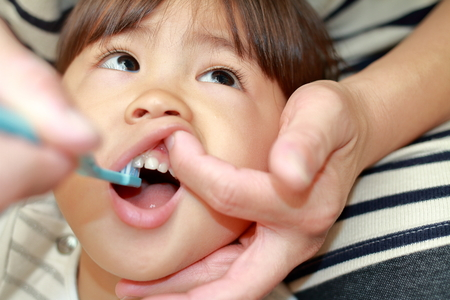 Photo for Japanese girl whose teeth are brushed by her mon (3 years old) - Royalty Free Image