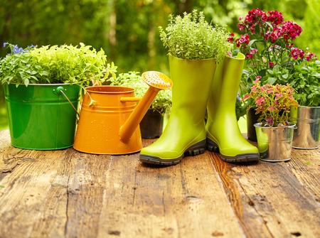 Foto de Outdoor gardening tools on old wood table - Imagen libre de derechos