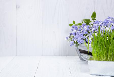 Foto de gardening tools background - Imagen libre de derechos