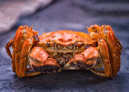 Foto de A cooked hairy crab. - Imagen libre de derechos