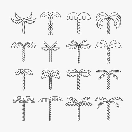 Illustration pour Graphical palm tree set, linear style, isolated vector objects - image libre de droit