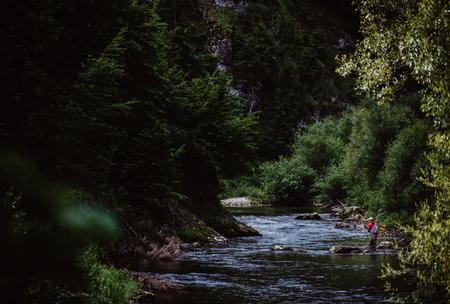 Foto de Trout-fishing in mountain river in summer time - Imagen libre de derechos