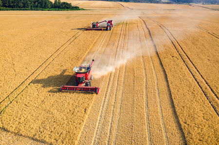 Foto de Aerial view on the combines and tractors working on the large wheat field - Imagen libre de derechos