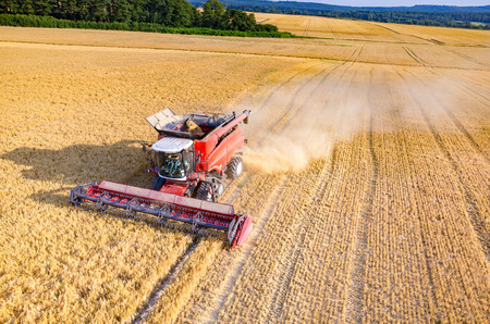 Photo for Aerial view on the combine working on the large wheat field - Royalty Free Image